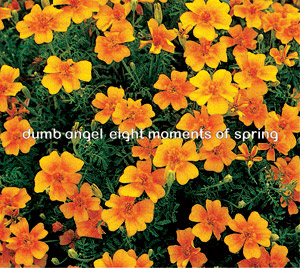 Dumb  Angel - Eight Moments of Spring