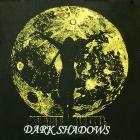 Dark Shadows LP on Rockadelic (1989)